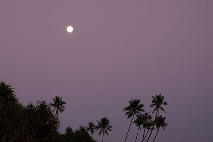 Moon-Rekawa-Sri-Lanka