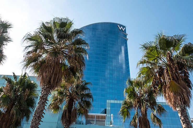 Barcelona-WHotel-palm-trees