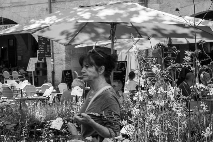 Plant seller in thePlace aux Herbes, Uzes, Gard, France