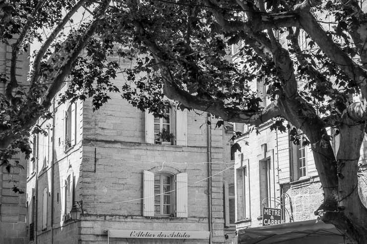 Trees, Place aux Herbes, Uzes, Gard, France