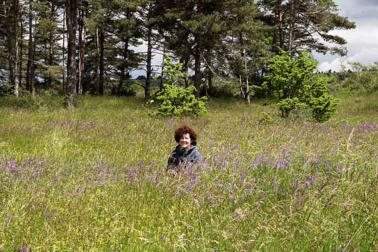 Gina Power sitting among the wildflowers, Causse Noir, France