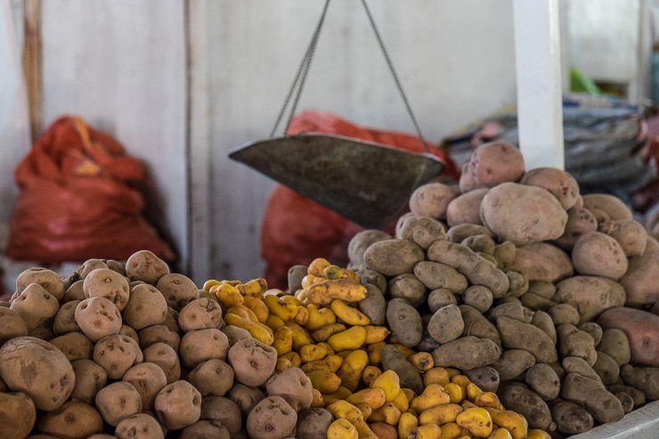Peru has around 3,000 varieties of potatoes, San Pedro market, Cusco, Peru