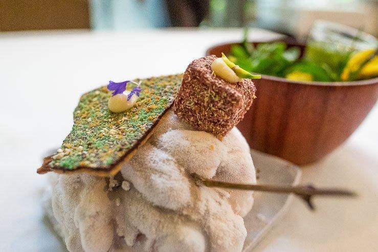 Alturas Mater Tasting Menu, Medicinals & Plant Dyes, Central Restaurant, Lima