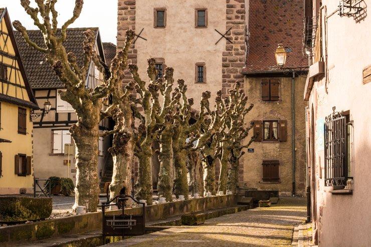 View of Porte Haute, Bergheim, Alsace