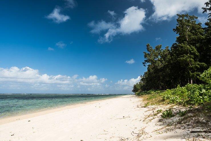 Beach, Surinam, Mauritius