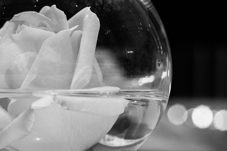 Rose in bowl at ESPA Life at Corinthia London