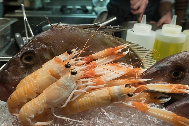 Seafood on display, Estimar, Barcelona
