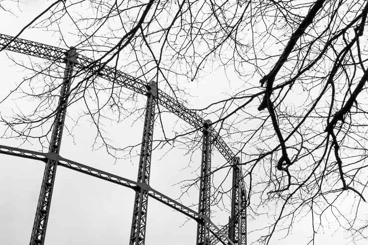 Gasometers with overhanging branches, Haggerston, London