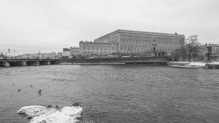 Black & white view of Gamla Stan with ducks on iceberg.