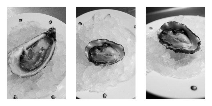 3 oysters, Neptune Restaurant, London