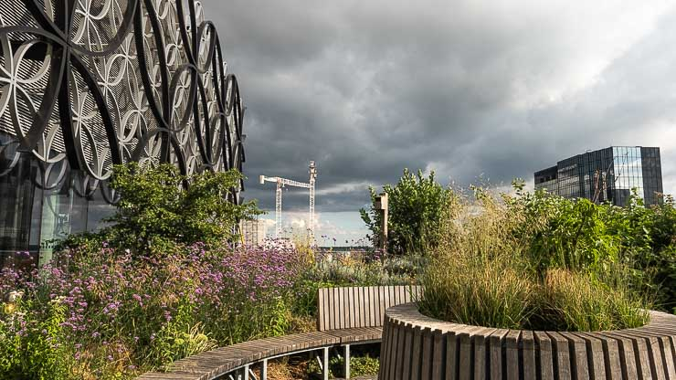 View towards cranes at the Secret Garden at the Library of Birmingham