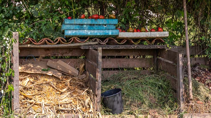 3 compost bins made out of wood with trays of tomatoes on top.