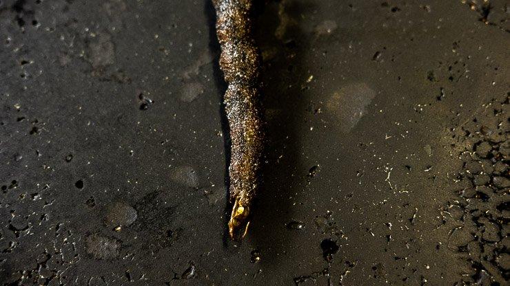 Carbon bean tempura served with romesco sauce, Les Cols, Catalonia