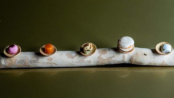 5 pastries along a trunk of silver birch, Les Cols, Catalonia