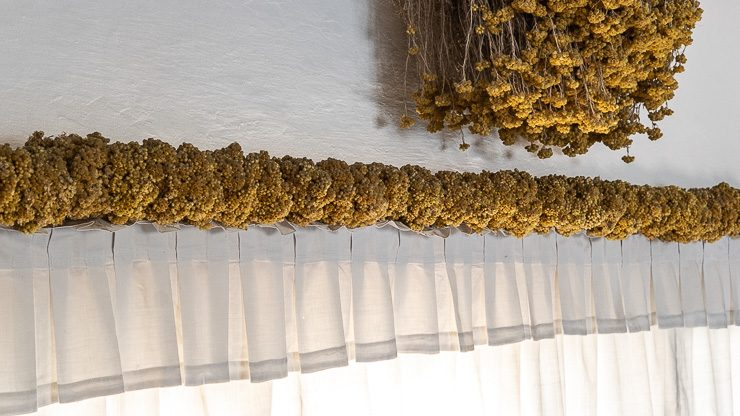 Row of immortelle on top of curtain, Dali's house, Port Lligat