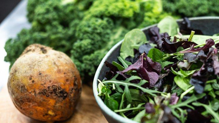 Vegetables, Plant Hub & Academy, London