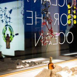 Window display at Haeckels